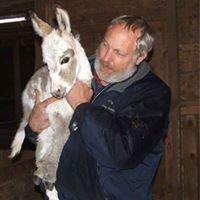 Amazia Veterinary Service Inc, PS