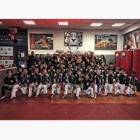 Tiger Schulmann's Mixed Martial Arts - Bay Ridge