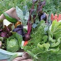Chuchubio - Frutas e Legumes Biológicos