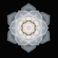 Mandala Reiki & Thai Yoga Therapy