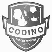 Codino Soccer Academy CM