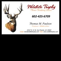 Wildlife Trophy Taxidermy