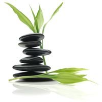 Fountain of Life Family Chiropractic