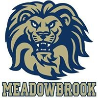 Meadowbrook High
