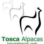 Tosca Alpacas