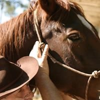 Southern California Equine Canine Chiropractic