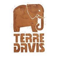 Terre Davis