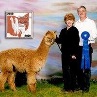 Shooting Star Alpaca Farm