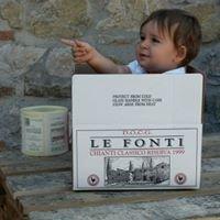 Fattoria Le Fonti - Panzano