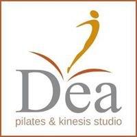 DeaStudio Pilates Kinesis Balducci