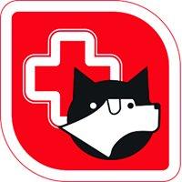 Hospital Veterinário de Viseu