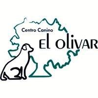 Centro canino El Olivar