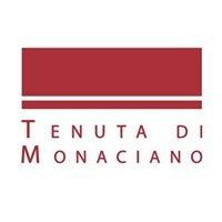 Tenuta di Monaciano