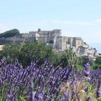 Occitania Tours (visit Provence)