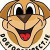 Dogfooddirect.ie