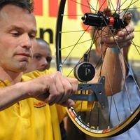 Frieke Bikeboosting handgespaakte wielen