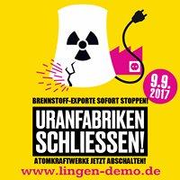 Lingen-Demo Anti-Atom