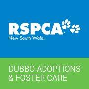 RSPCA Dubbo Adoptions & Foster Care