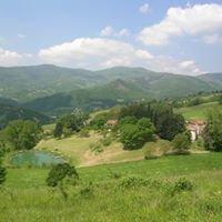 Agriturismo biologico Fattoria di Mogginano Toscana