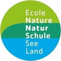 Natur Schule See Land