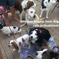 Angels Bayside Cafe/Restaurant