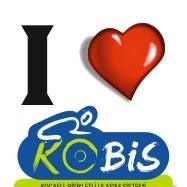 KOBİS - Kocaeli Bisikletli Ulaşım Sistemi