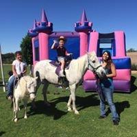 Party Ponies Yuma