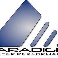 Paradigm Soccer