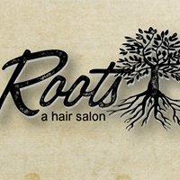 Roots a hair salon
