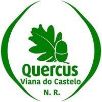 Quercus - NR Viana do Castelo
