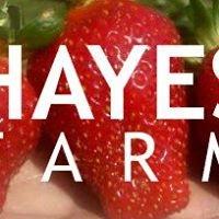 Hayes Farm