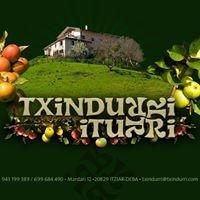 Txindurri-Iturri