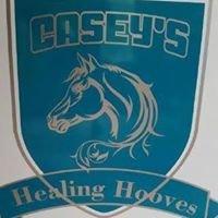 Casey's Healing Hooves