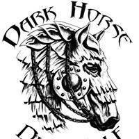 Dark horse disc golf