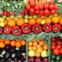 Al Hoda Organic farm