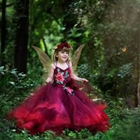 Fireflies and fairytales photography Townsville