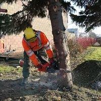 Tree:TmenT - Specialist Tree Solutions