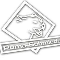 Puma-Schmiede / PS-Motorsport