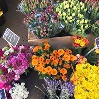 Napier Sunday Markets
