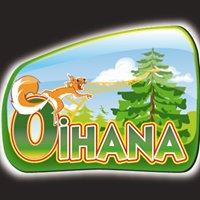 Oihana parcours d'aventures & Paintball