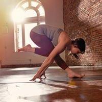 Sara Levine Yoga