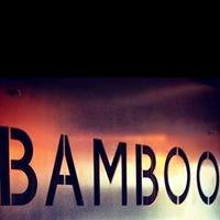 Bamboo Plymouth