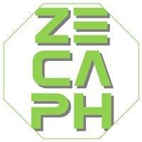 Zecaph - solutii complete pentru constructii responsabile