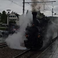 Dampfzug Waldenburgerbahn