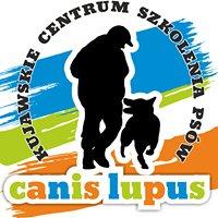 """Kujawskie centrum szkolenia psów""""Canis Lupus """""""