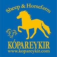Sheep & Horsefarm Kópareykir