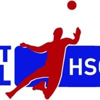 Faustball Hammer Sportclub 2008 e.V.