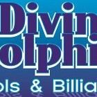 Diving Dolphin Pools and Billiards L.L.C.