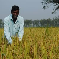 Climate Change and Food Security Project by VSO Bangladesh and Oxfam
