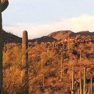 Arizona Real Estate Broker, Glenn Loper, HomeSmart, LLC